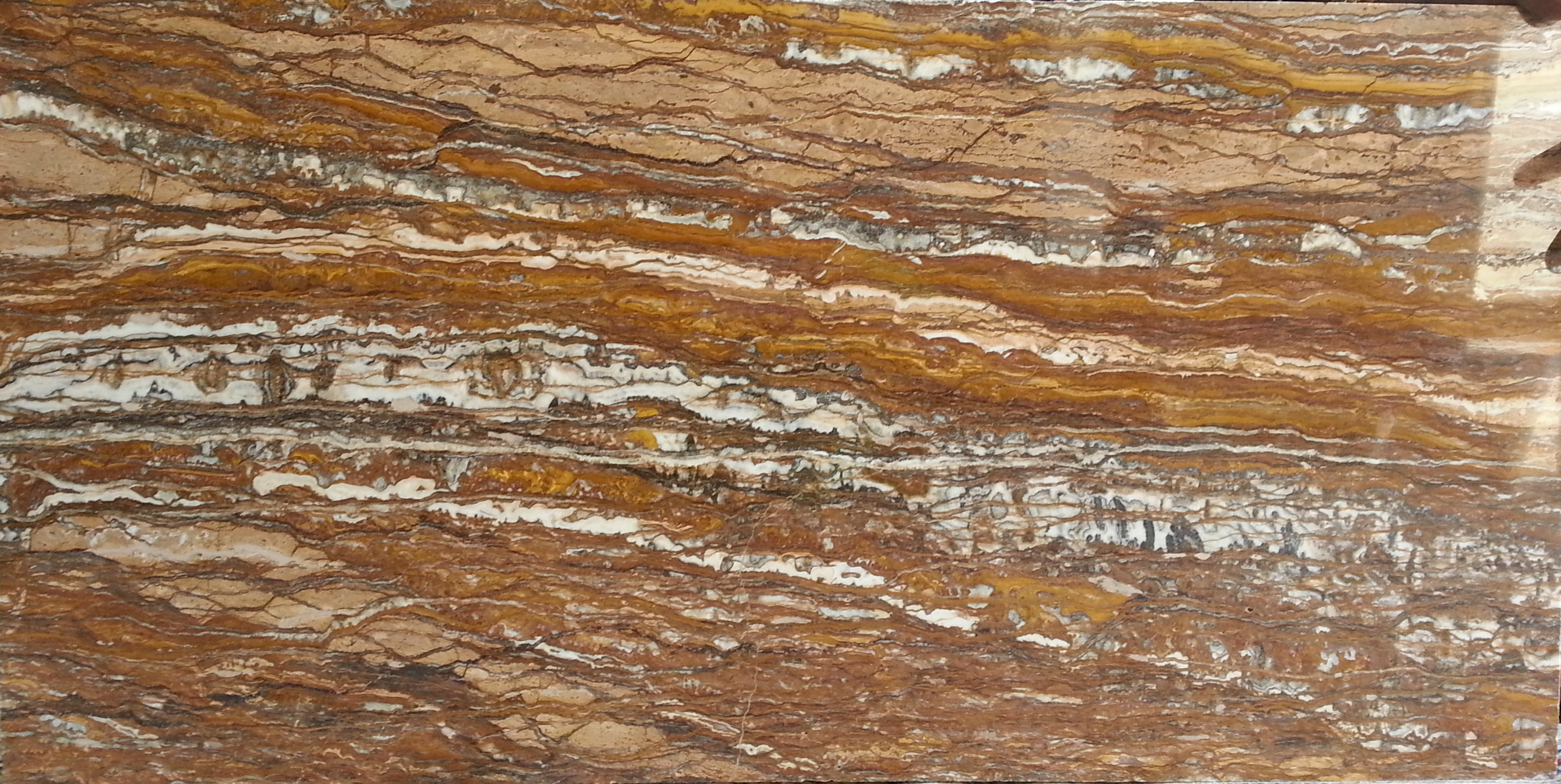 Tree Root Travertine Walnut Marble Shop